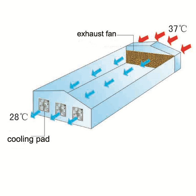 Honeycomb Water Cooling Pad And Exhaust Fan Systems for Poultry Farm